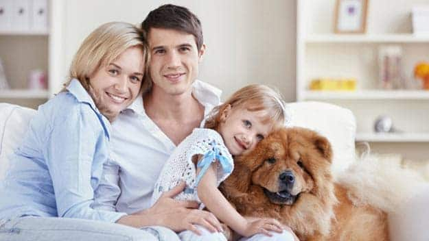 Wills & Trusts dog-young-family Direct Wills Walham Green